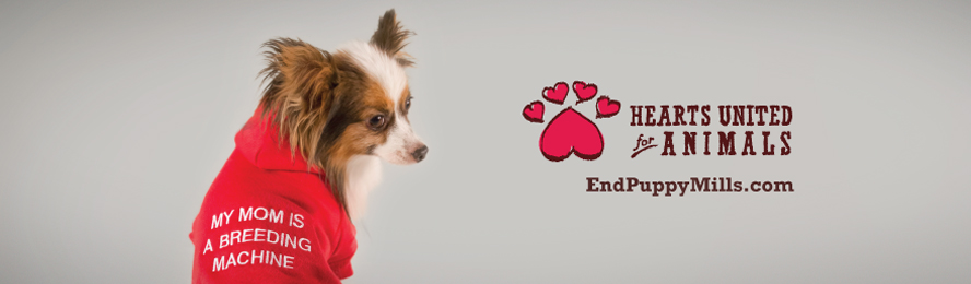 New Billboards Help To End Puppy Mills! - HUA Blog - Hearts United ... fbe203729c