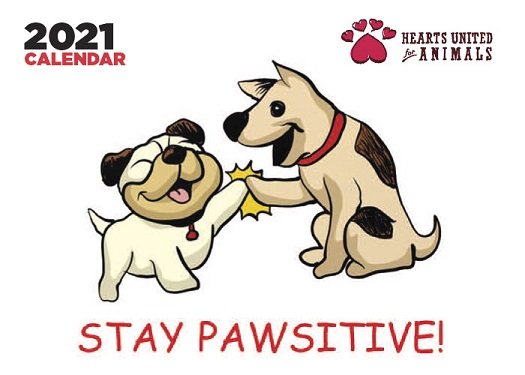 stay pawsitive calendar link pages 1024 1A